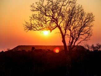 Découvrir les lieux les plus passionnants de Madagascar