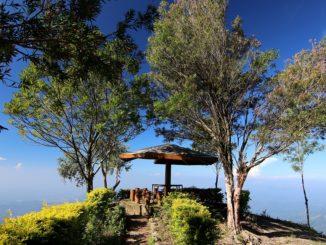 Un total dépaysement lors d'un Sri Lanka prestiges voyages