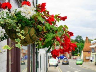 Conseils pour une décoration extérieure réussie